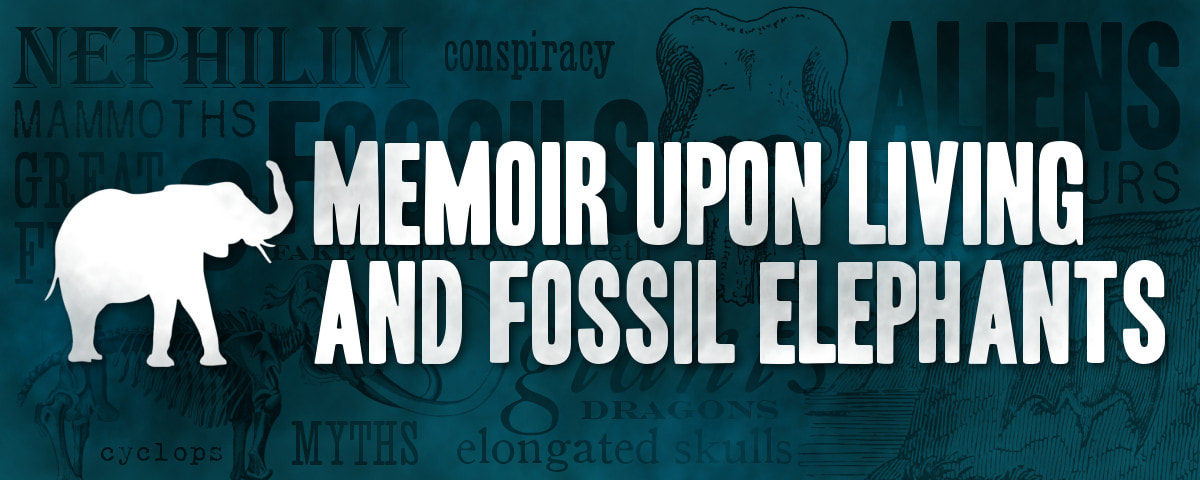 Fossil Elephants